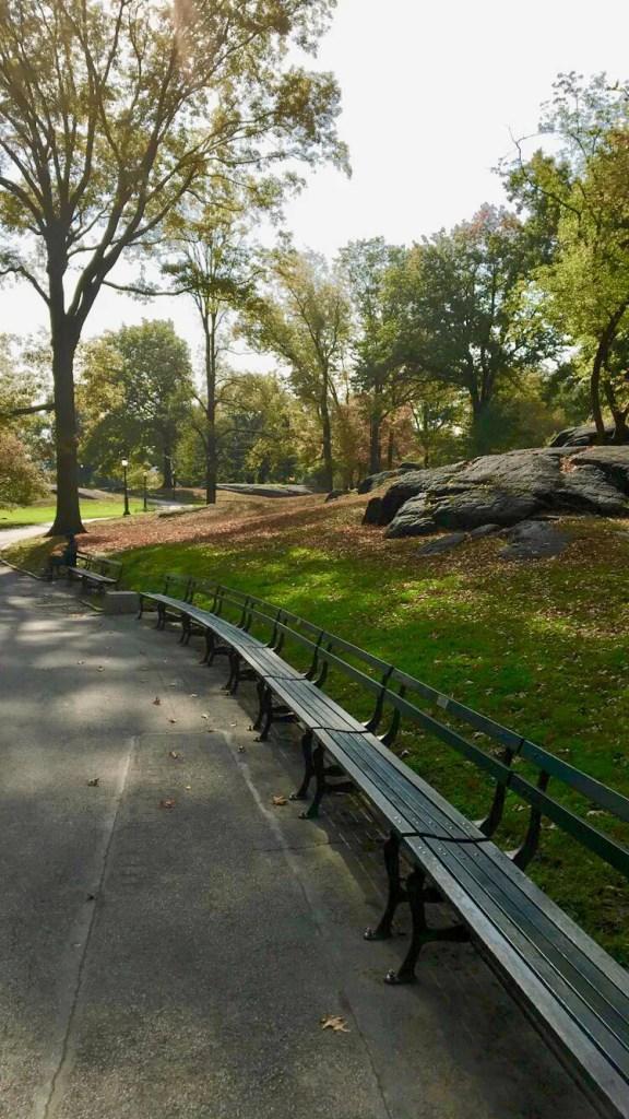 NYC Marathon Central Park