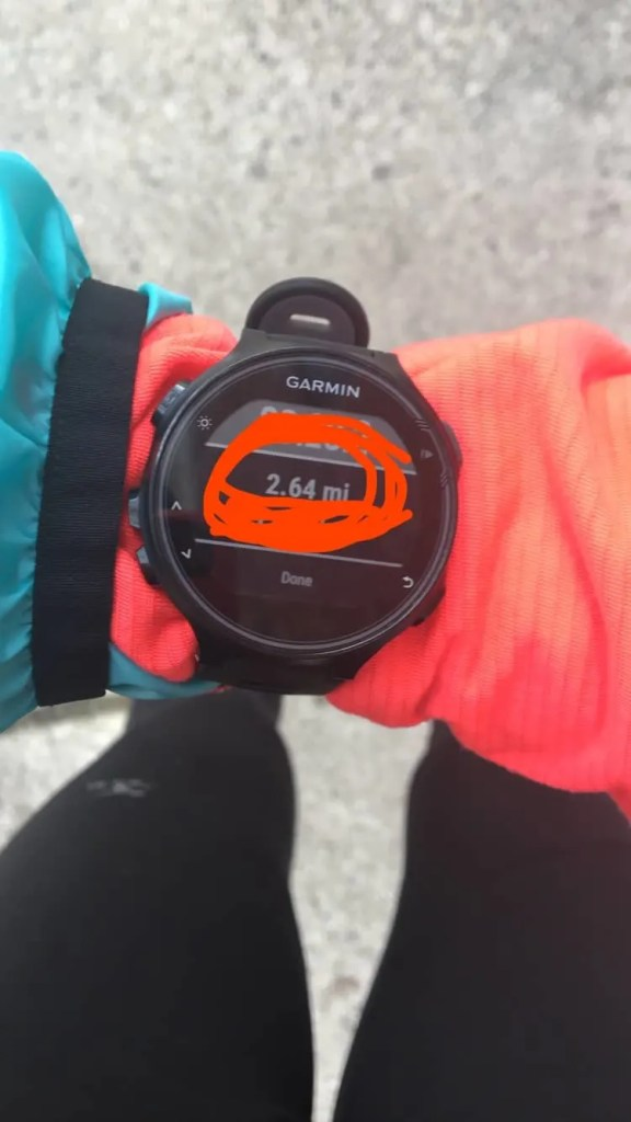 This week of 25k training brought a race for my long run! Check out this Martian Half Marathon Recap and the rest of week 12 after vacation.