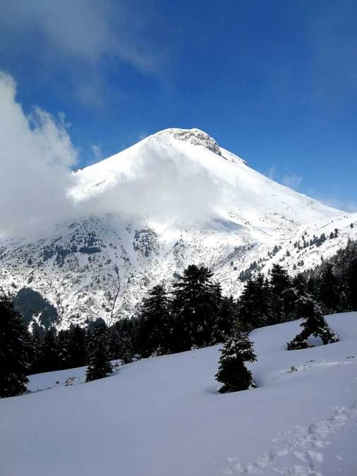 Η χιονισμένη κορυφή της Δίρφυς στην Εύβοια - Running Scenes News