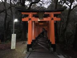 Senbon Torii which means 'thousands of torii gates'
