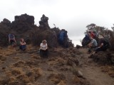 Day 2, Rongai Route, Mount Kilimanjaro