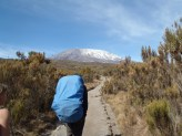 Rongai Route, Day 2, Felix of Team Kilimanjaro
