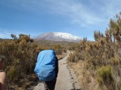 Rongai Route, Day 2, Felix of Team Kilimanjaro