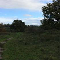 walk-around-lanercost-23rd-oct-1