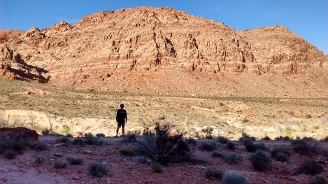 red rock sillouette