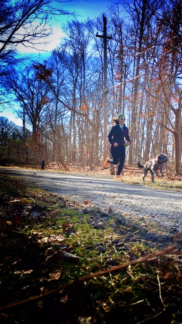 I'm now currently training for a bunch of spring races with the added bonus of Grandma's Marathon in June! It's going to be a fun racing season.
