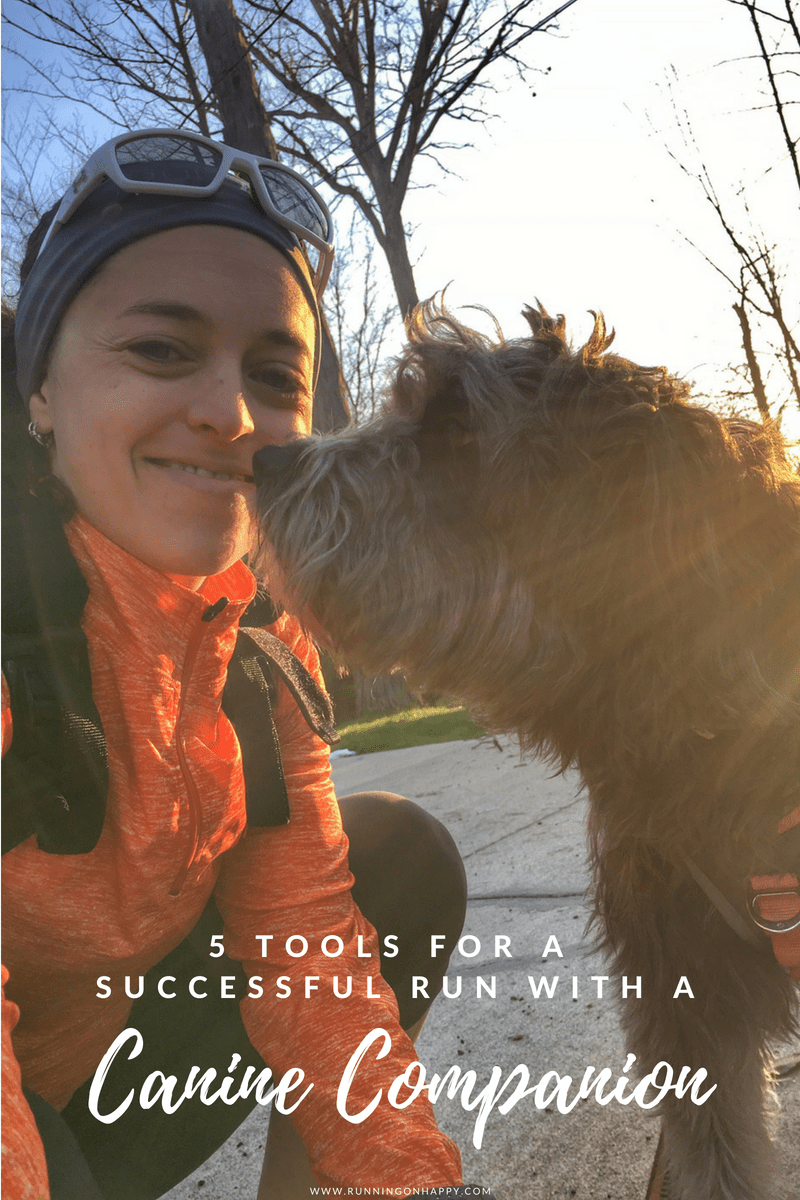 I love running with my canine companion. It's a nice change of pace and with a little planning, you can run with your dog, too!