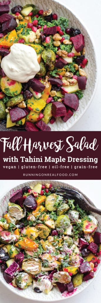 Fall Harvest Salad with Tahini Maple Dressing