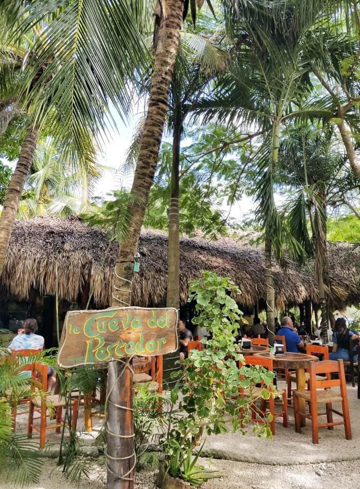 Vegan Food and Restaurants in Tulum and Playa del Carmen Mexico