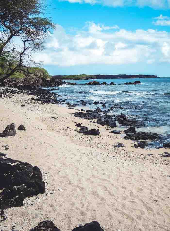 Best Things to do on Maui - Running on Real Food