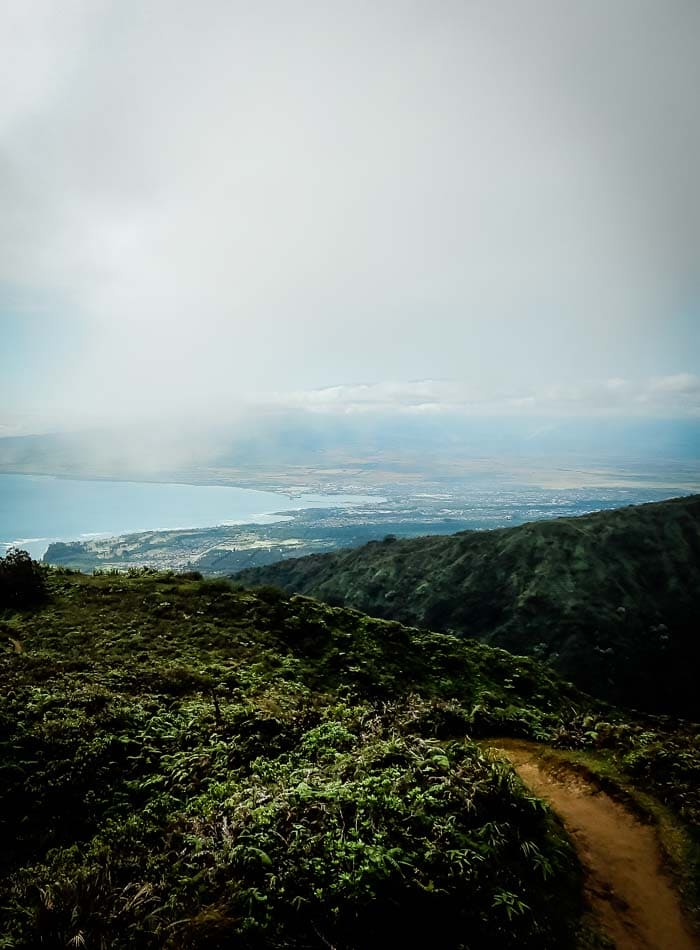 Hiking Wiahee Ridge Trail on Maui - Running on Real Food