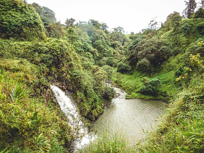 The Road to Hana in Maui - Running on Real Food