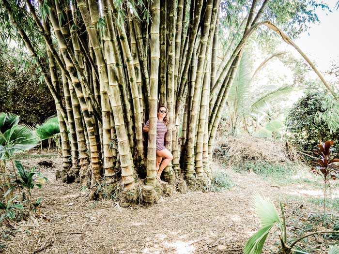 What to do on Maui - Running on Real Food