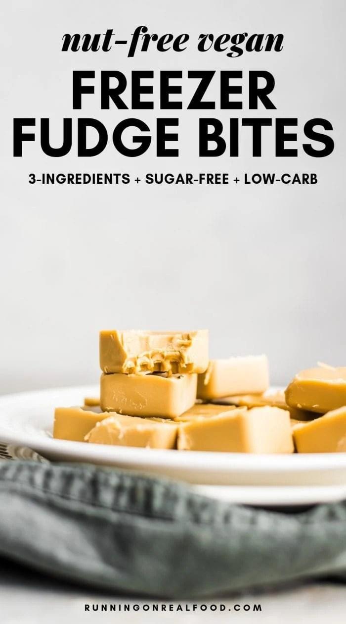 Easy Vegan Freezer Fudge Bites