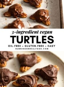 Pinterest graphic with an image and text for easy vegan turtles.