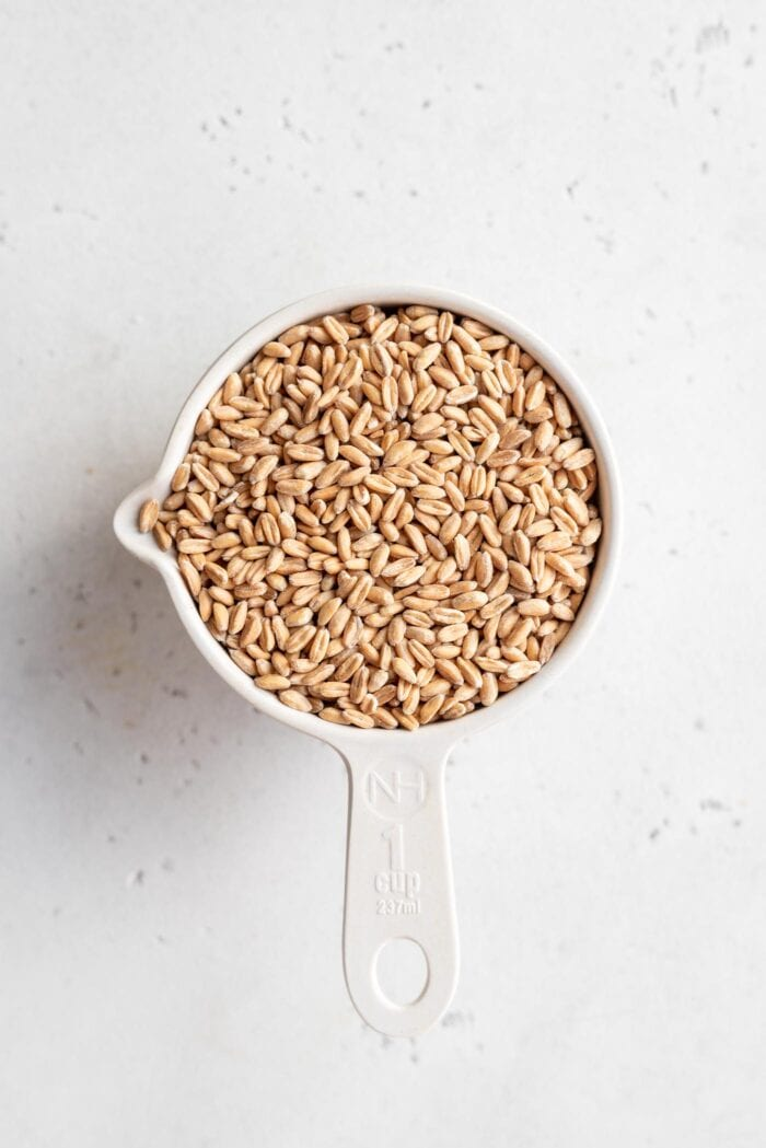 1 cup of dry uncooked farro in a measuring cup.