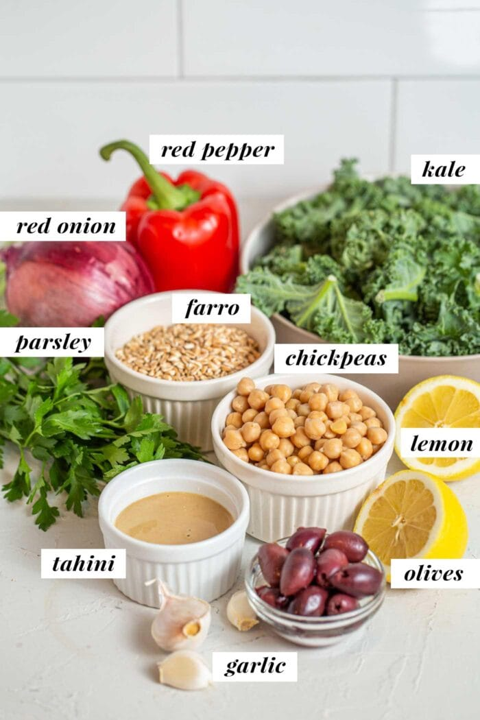Chickpeas, kale, olives, parsley, tahini and red pepper labelled with text overlay.