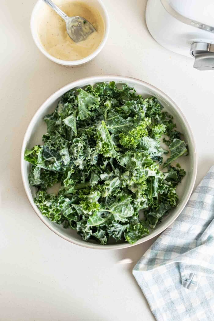 Kale with dressing on it in a bowl.