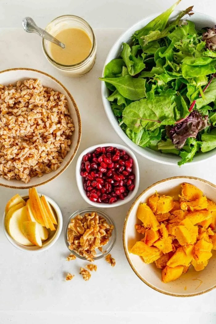 Roasted squash, salad greens, apple, walnuts, farro and dressing on a counter.