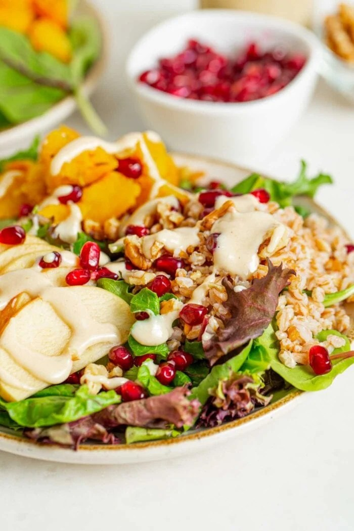 Close up of a colorful salad with pomegranate, apple and walnuts.