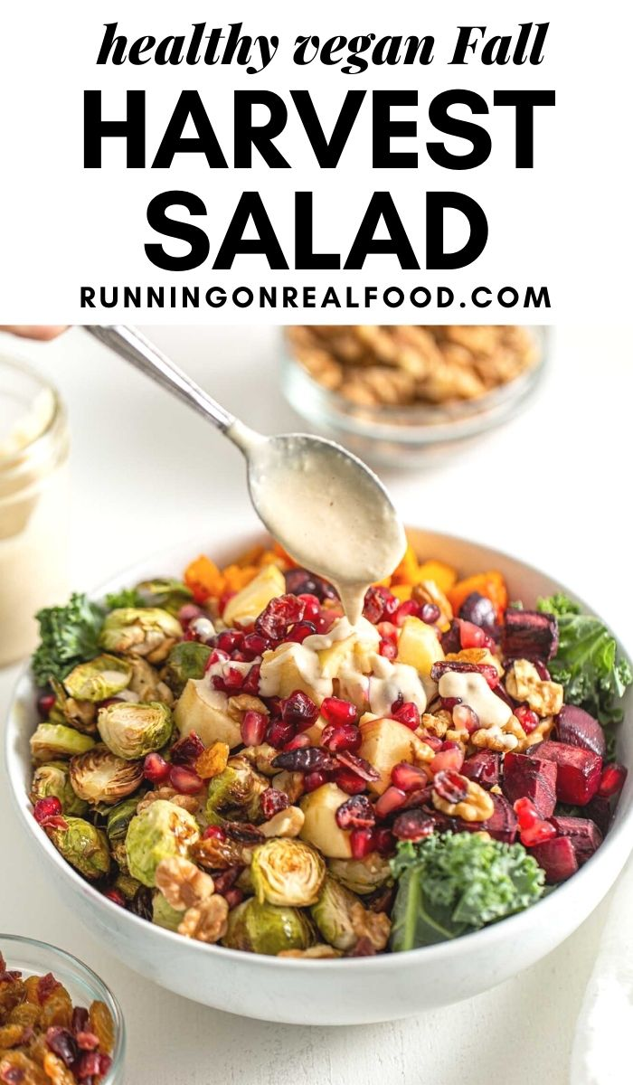 Pinterest graphic with an image and text for a Fall Harvest Salad.
