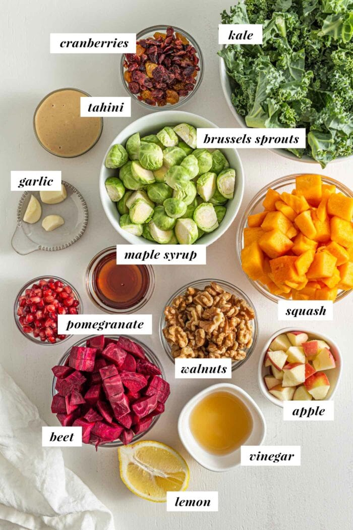 Various ingredients for in bowls for making a Fall salad, labelled with text overlay.
