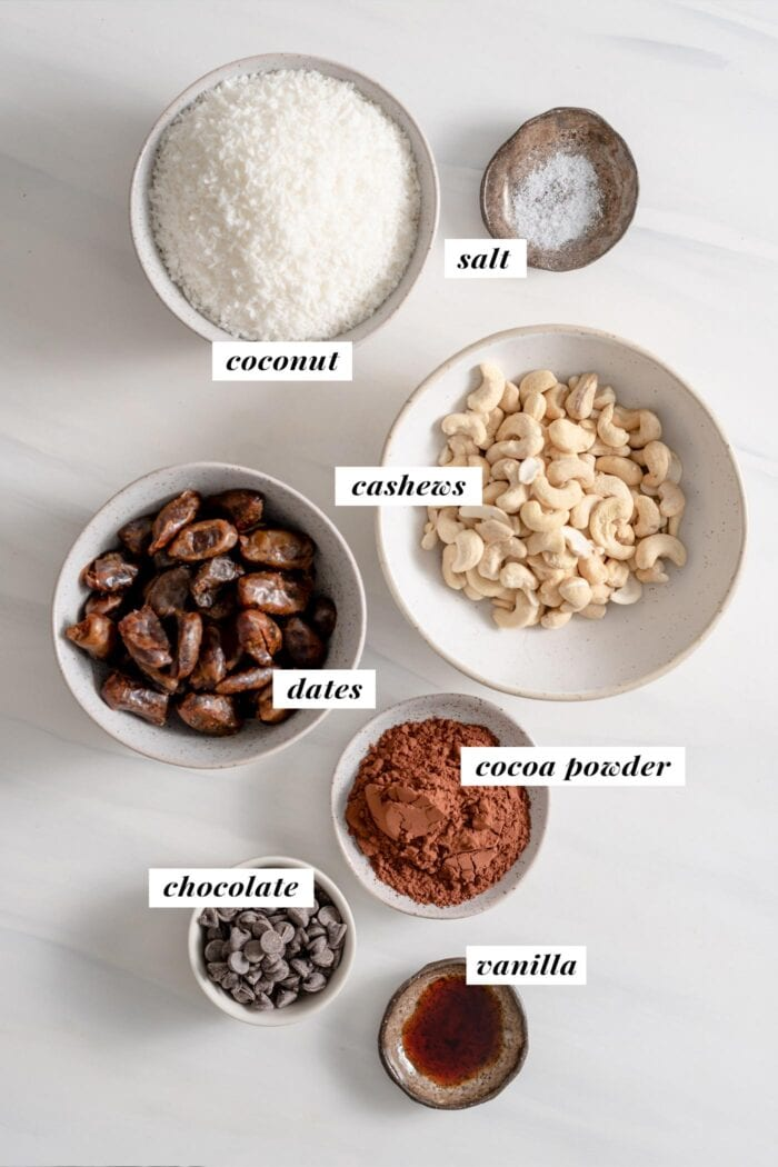 Visual of ingredient list for making vegan chocolate coconut macaroons. Ingredients are labelled with text overlay.