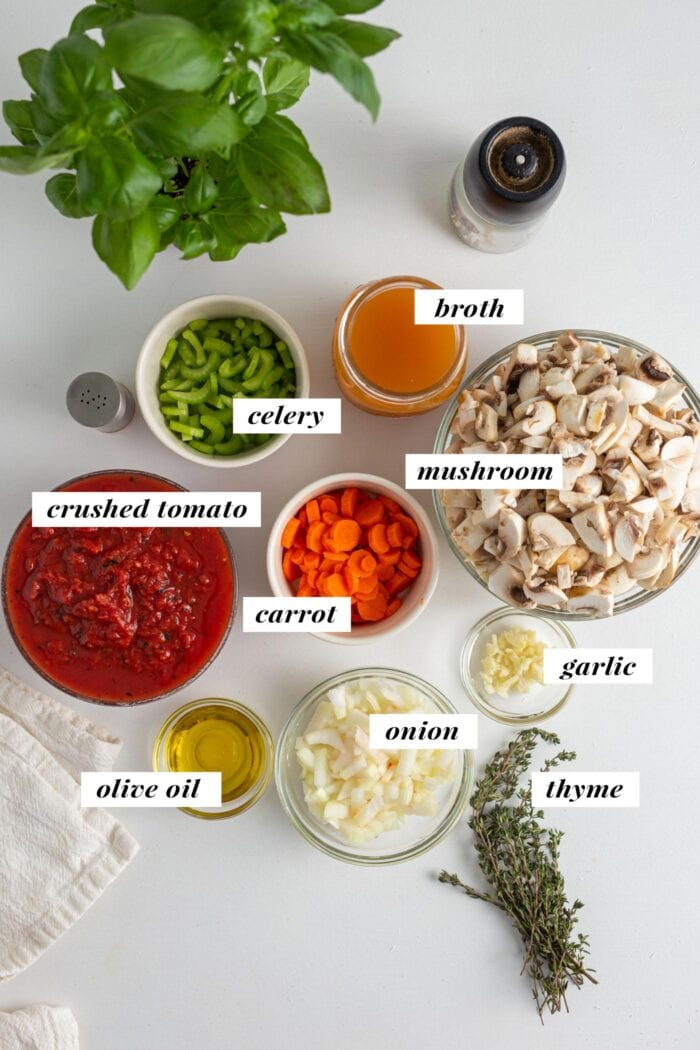 Visual of all ingredients needed for making a vegan bolognese sauce. Each ingredient is labelled with text overlay.
