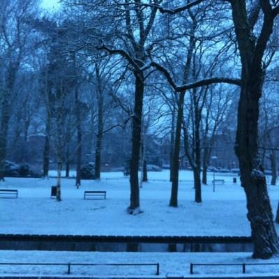 park Witte wereld op de best vroege zaterdagochtend #nofilter februari 2013