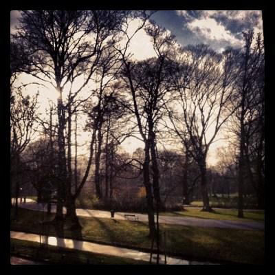 park met winterzon 14.12.13