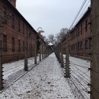 Auschwitz afzetting