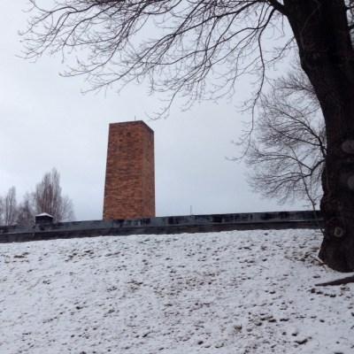 Auschwitz crema 1