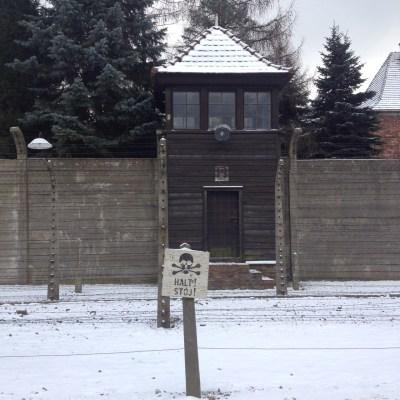 Auschwitz halt