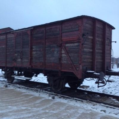 Birkena trein