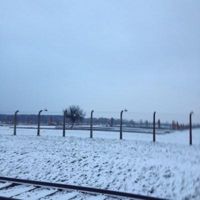 Birkenau kale deel