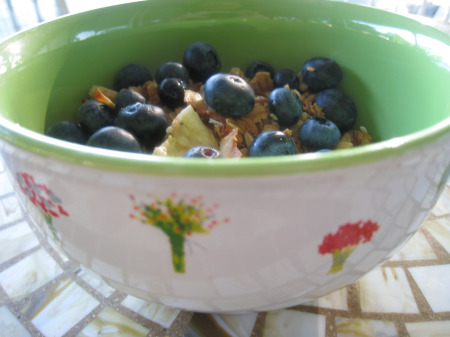 Gereal-granola2
