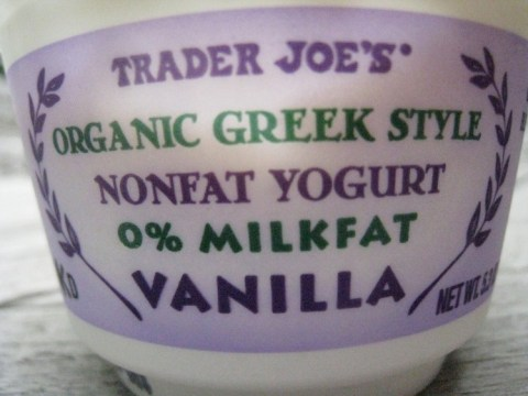 Trader Joe's Organic Greek Yogurt in Vanilla