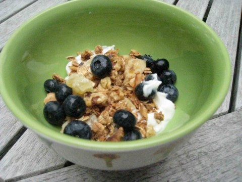 TJ's Greek Yogurt with RWC Pina Colada granola mix.