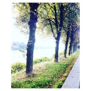 Maastricht herfst wandeling