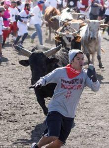 bull running selfie
