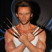 high jackman as wolverine from X-men