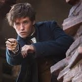 newt scamander in fantastic beasts where to find them crimes of grindelwald