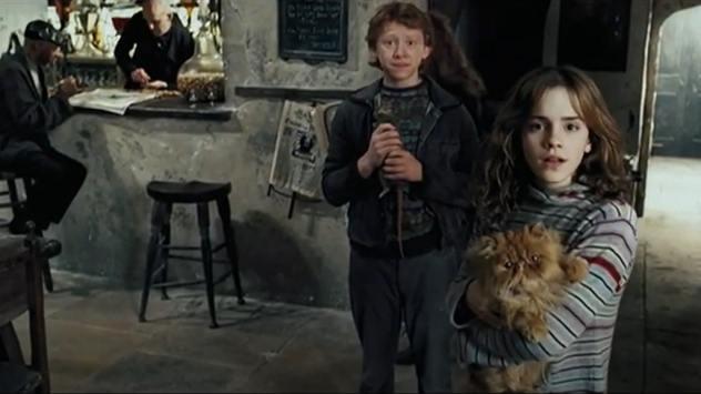 harry-potter-prisoner-azkaban-crookshanks-cat