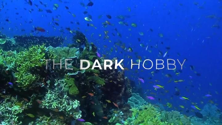 the-dark-hobby_header