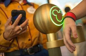 Disney Parks Fastpass+ News