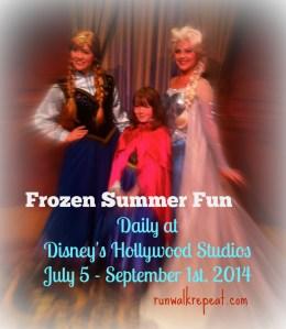 Frozen Summer Fun Coming to Disney's Hollywood Studios