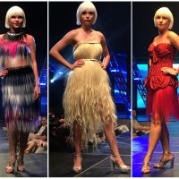 Wearable Art Runway Show