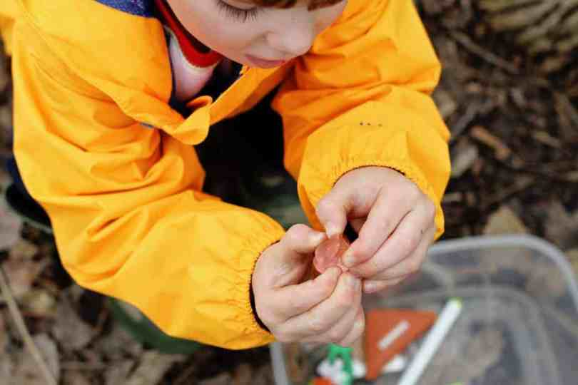 Geocaching with kids - finding treasure