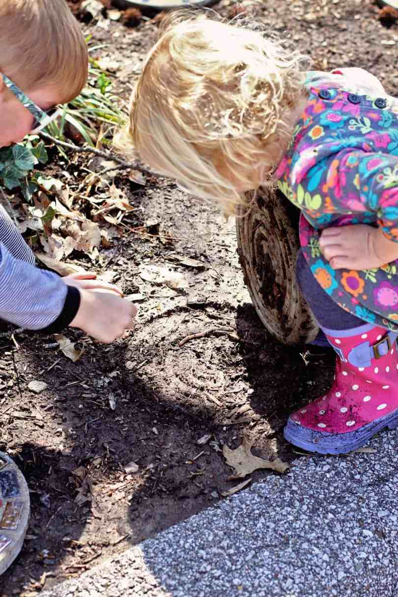 finding worms with kids
