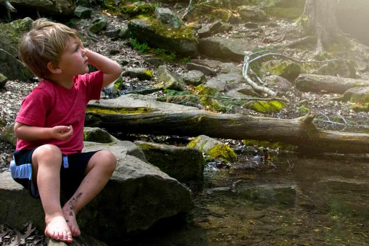 Sit Spotting: Nature Meditation with Kids • RUN WILD MY CHILD